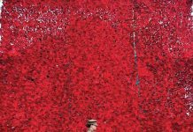 Katie Yeo and her horse, Theo pose in front of the newly unveiled A Field of Poppies.