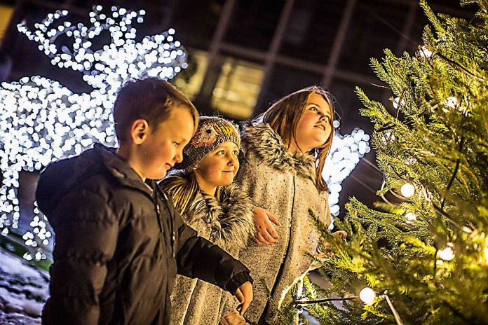 Bradley Lowery's cousins switch on Durham's Christmas lights