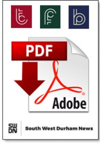 pdf document logo