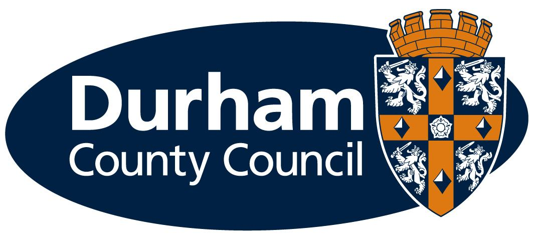Audit Committee Seeks New Member South West Durham News