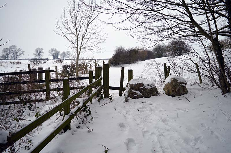 Coundon Woods stile