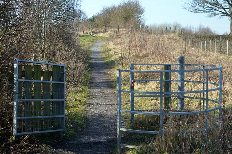Shildon walks - Eldon Bank walk has extra paths worth exploring.