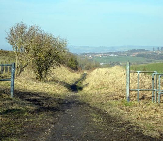 Hidden Shildon - Eldon Bank Top provides stunning views across to Bishop Auckland.