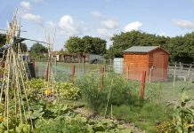 Spennymoor Town Council is asking the general public to stay away from allotments.